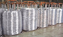 automatic baling wire_carrier stems